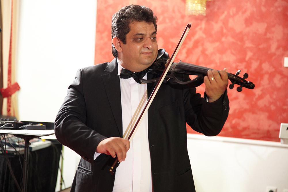 violonist la nunta