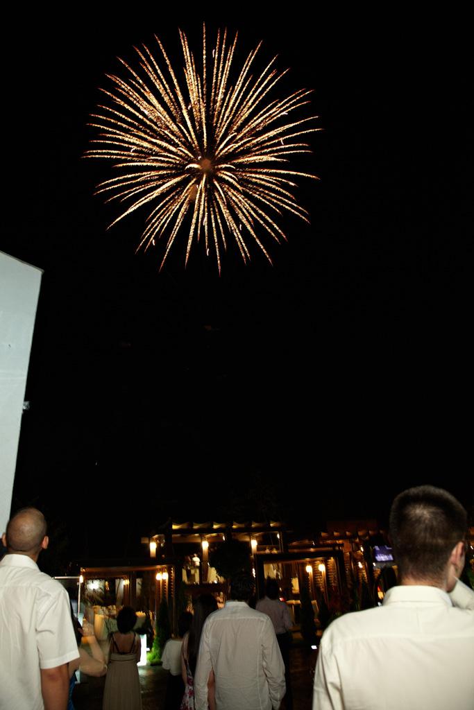 artificii ca o papadie la petrecerea de nunta